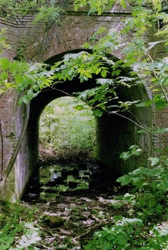 http://www.mjk-h0.dk/evp_Hamm/1180.i.02.viadukt_v.roeglegd.hamm.tglv.4.6.2002.jpg