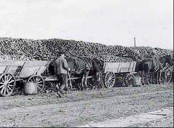 Billedresultat for roer i gamle dage