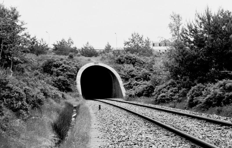 http://www.mjk-h0.dk/evp_SVJ/249-505.iii.17a.dsb.tunnellen_v.skive.12.6.1976..jpg