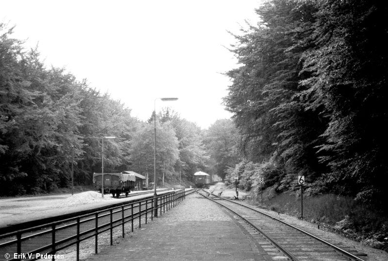 3485-417.I.05.Hareskov st, vestenden.1.juni_1969.jpg (800×537)