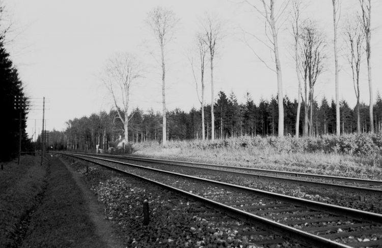 http://www.mjk-h0.dk/evp_Soroe/14.i.19.banestr.inden%20soroe.marts_1957.jpg