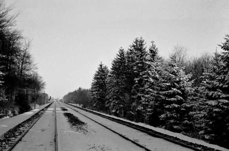 http://www.mjk-h0.dk/evp_Soroe/35.ii.29a.skoven%20ved_knudstrup.nov.1957.jpg